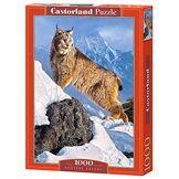 Castorland - C-103560-2 - Puzzle - Austère Ascent - 1000 Pièces