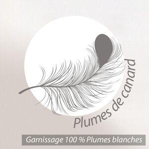 Linnea Traversin 160 cm GRIZZ'LIT PLUMES 100% Plumes de Canard - Publicité