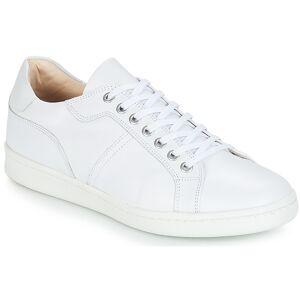 André Xαμηλά Sneakers André AURELIEN ΣΤΕΛΕΧΟΣ: Δέρμα & ΕΠΕΝΔΥΣΗ: Δέρμα / ύφασμα & ΕΣ. ΣΟΛΑ: Δέρμα & ΕΞ. ΣΟΛΑ: Καουτσούκ  - Size: 43