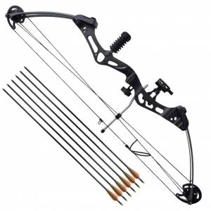 vidaXL Adult Compound Bow with Accessories and Fiberglass Arrows