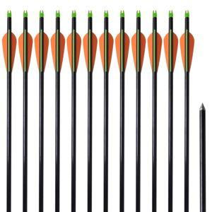 "vidaXL Standard Compound Bow Arrows 30"" 0.8 cm Fiberglass 12 pcs"
