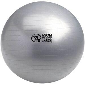 Fitness-Mad Swiss Ball & Pump (65cm Silver) - 65cm Silver   Gym Balls