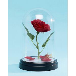PALADONE Disney Enchanted Rose Light-Multi