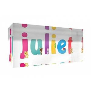 Little Helper Souvenir Decorative Polished Clear Acrylic Diamond Style Example with Girl's Name Juliet 5x 15x 2cm Small Multi-Coloured