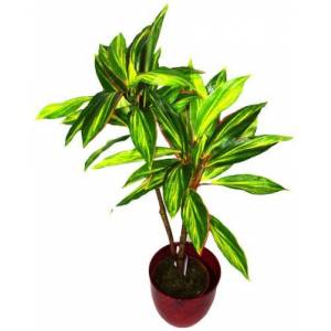 Geko Large 3ft, 90 cm Artificial Large Dracaena House Plant Indoor or Outdoor Use
