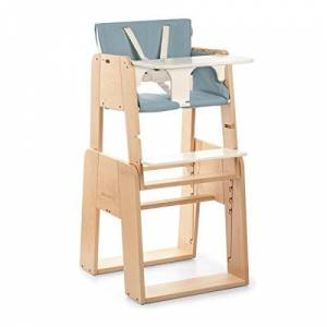 moodelli Growi-Highchair Evolutionary with Safety Harness and Set, 6Months, Includes Tray and Cushion-Wood/Blue