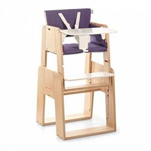 moodelli Growi-Highchair Evolutionary with Safety Harness and Set, 6Months, Includes Tray and Cushion-Wood/Purple