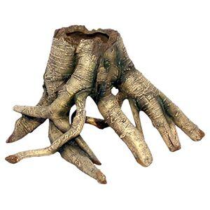 Haquoss Arboreal Root Ornament for Aquarium Decor, Small