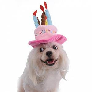 Walaha Cute Hat Pet Cap Birthday Party Hat With Happy Birthday Candles For Dogs Cats