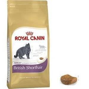 ROYAL CANIN 2 x 400g Royal Canin British Shorthair Adult Complete Cat Food Sold by Maltby's