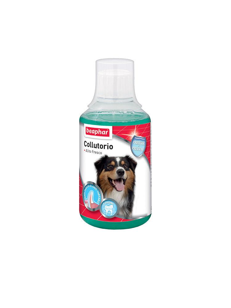 Beaphar Colluttorio Cani