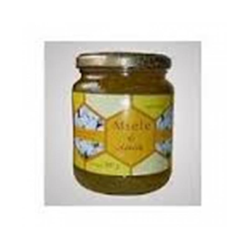 futura amoreal miele acacia 50 g