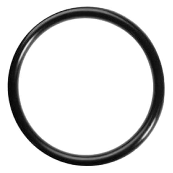 Didiesse Guarnizione O-Ring Per Macchine Da Caffè Cialde Ese44 (, Faber, La Piccola, Grimac, Spinel, Union Group)