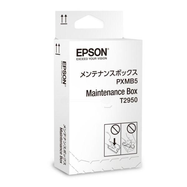 epson originale  workforce wf-100 w kit manutenzione (t2950 / c 13 t 295000), 50,000 pagine, 0.01 cent per pagina