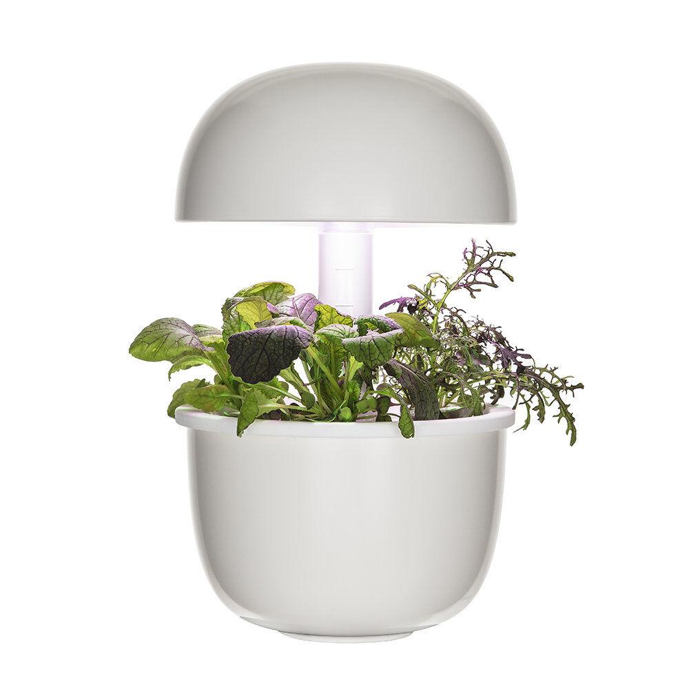 plantui italia plantui 3 smart garden, bianco