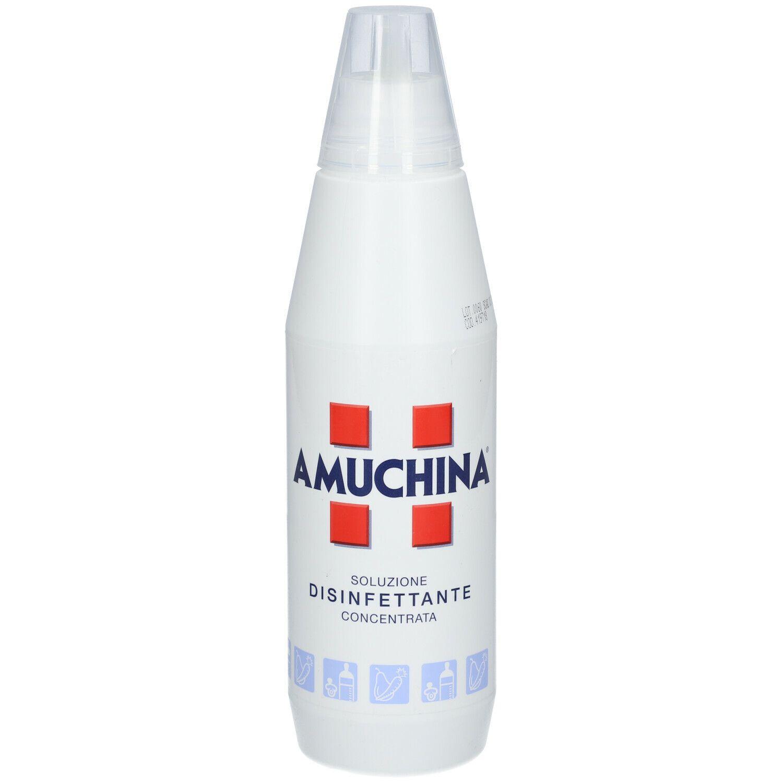 Amuchina ® Soluzione Disinfettante Concentrata 1000 ml Soluzione disinf