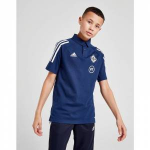 Adidas Northern Ireland Condivo 20 Polo, Celeste