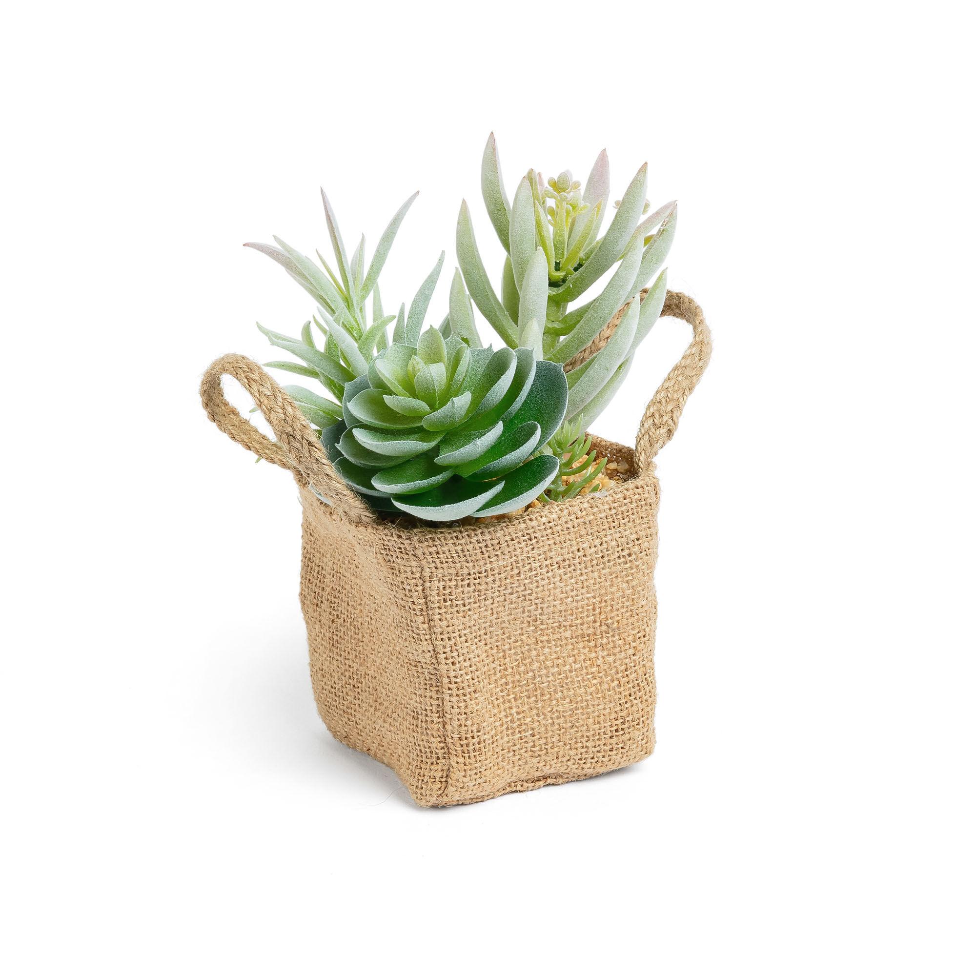kave home mix piante suculenta artificiali in un vaso di rafia naturale