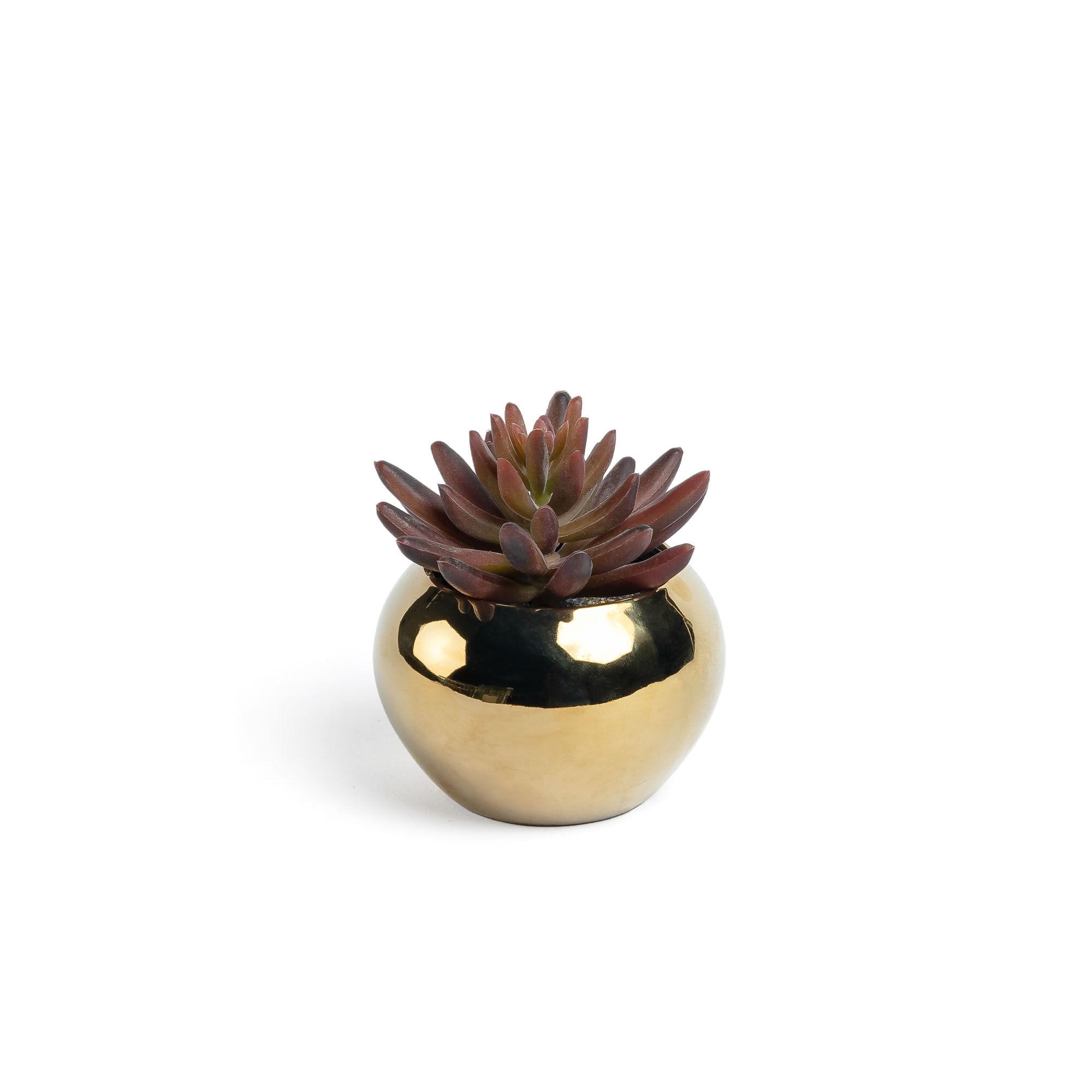 kave home pianta artificiale sedum lucidum in un vaso da creramica dorato