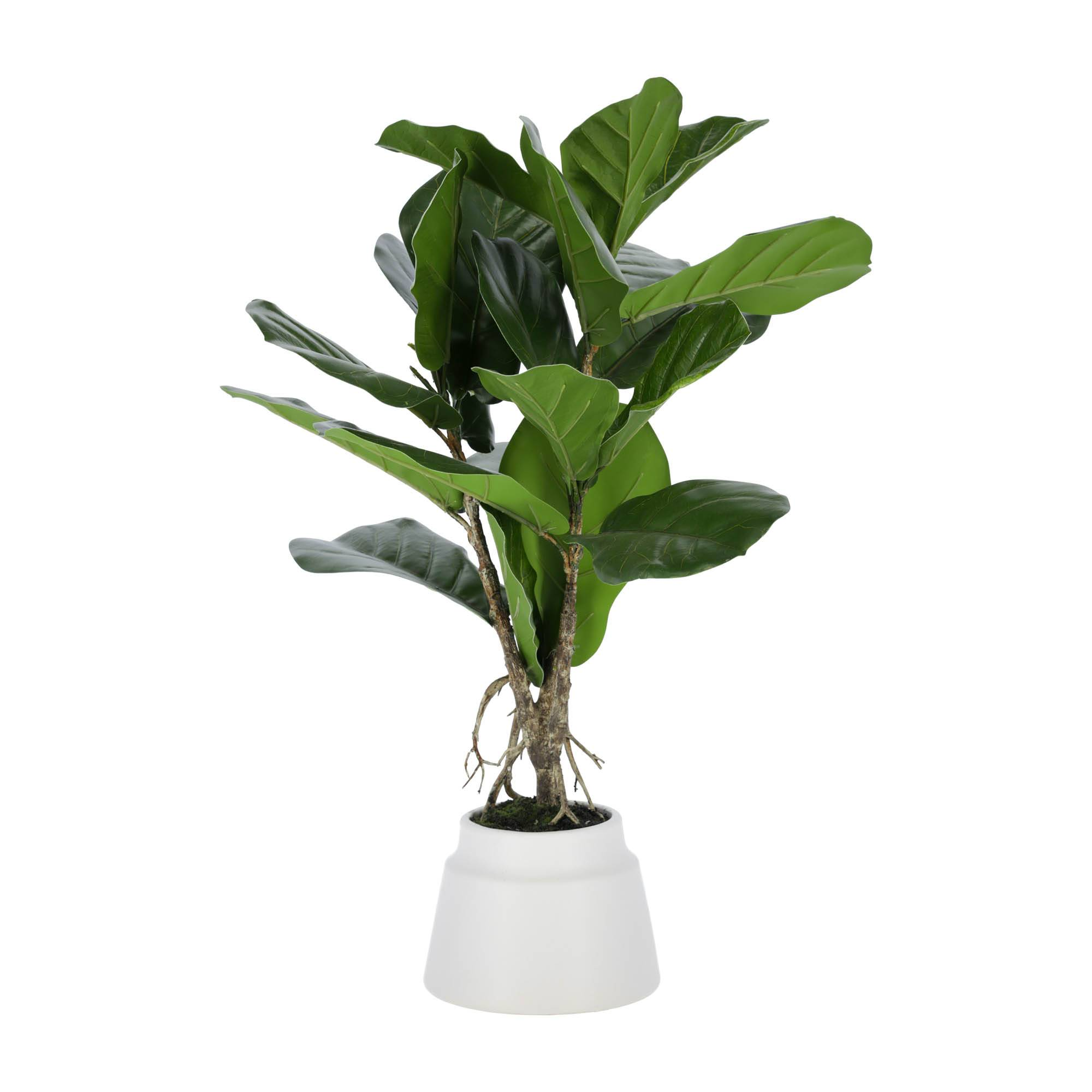 kave home pianta artificial lyrata da 60 cm