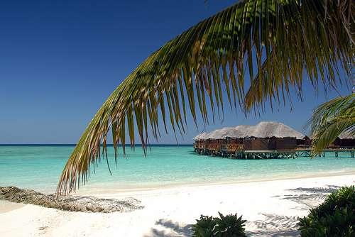 Maldive : Atollo di Male Sud