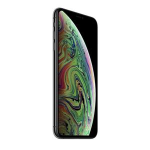 """Apple iPhone XS Max 16,5 cm (6.5"""") 512 GB Doppia SIM Grigio"""