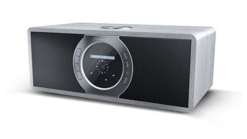 Sharp DR-I470(GR) radio Portatile Digitale Grigio
