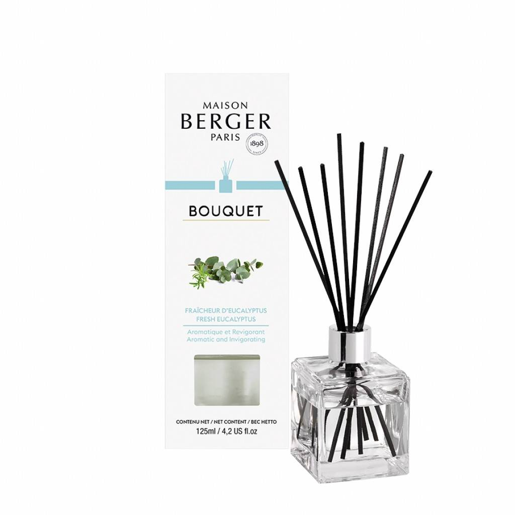 Maison Berger Paris Bouquet Parfumé Cube 125 Ml