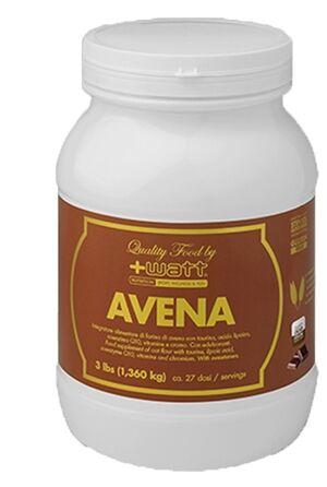 Avena Quality Food Cacao 1361 G