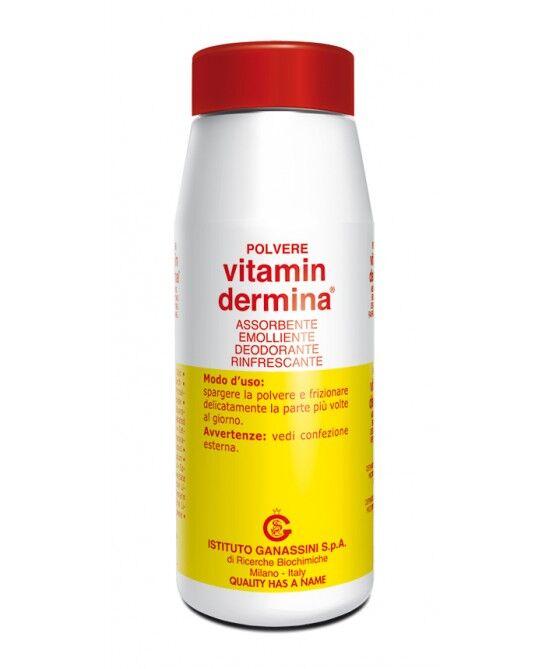 Ist.Ganassini Spa Vitamin Dermina Polvere Assorbente 100g