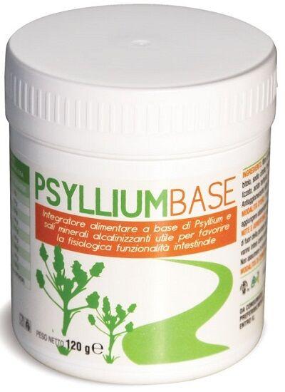 A.V.D. Reform Srl Psyllium Base Polvere 120g Avd