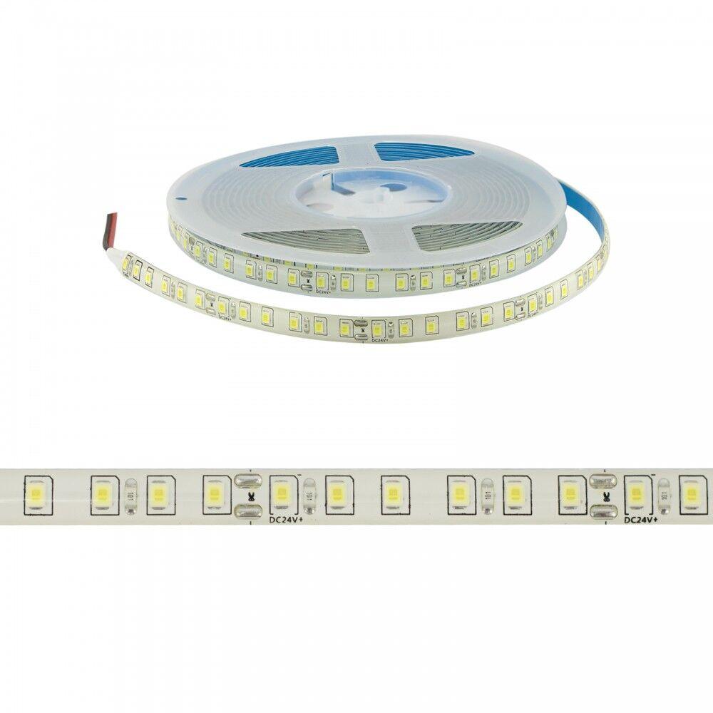 leddiretto striscia led 24v 12w/m 2835/120m - ip65