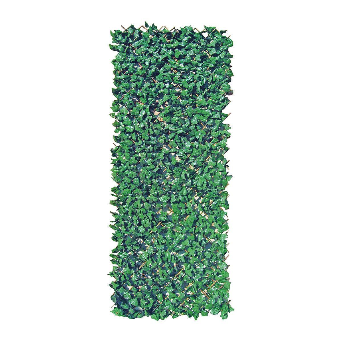 Traliccio Sempreverde Foglia Lauro 1x2 M