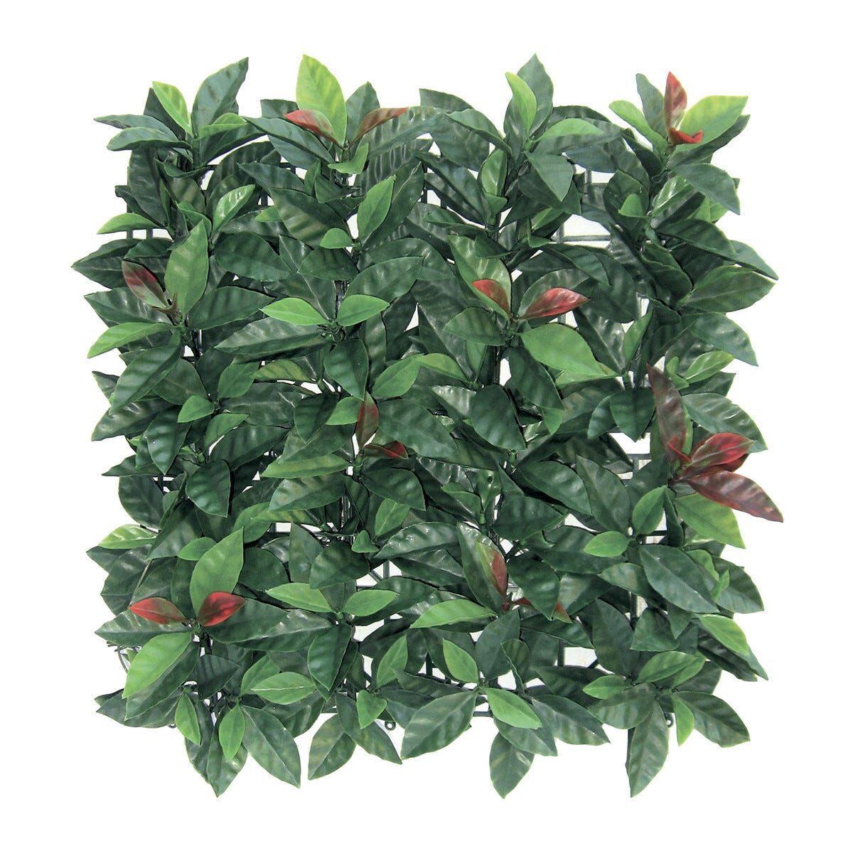 Foglia Sempreverde Redplast 1x1 M