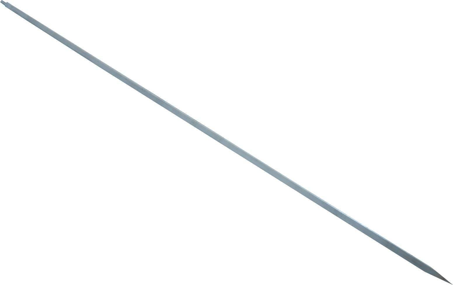 spiedino inox per girarrosto 100 cm