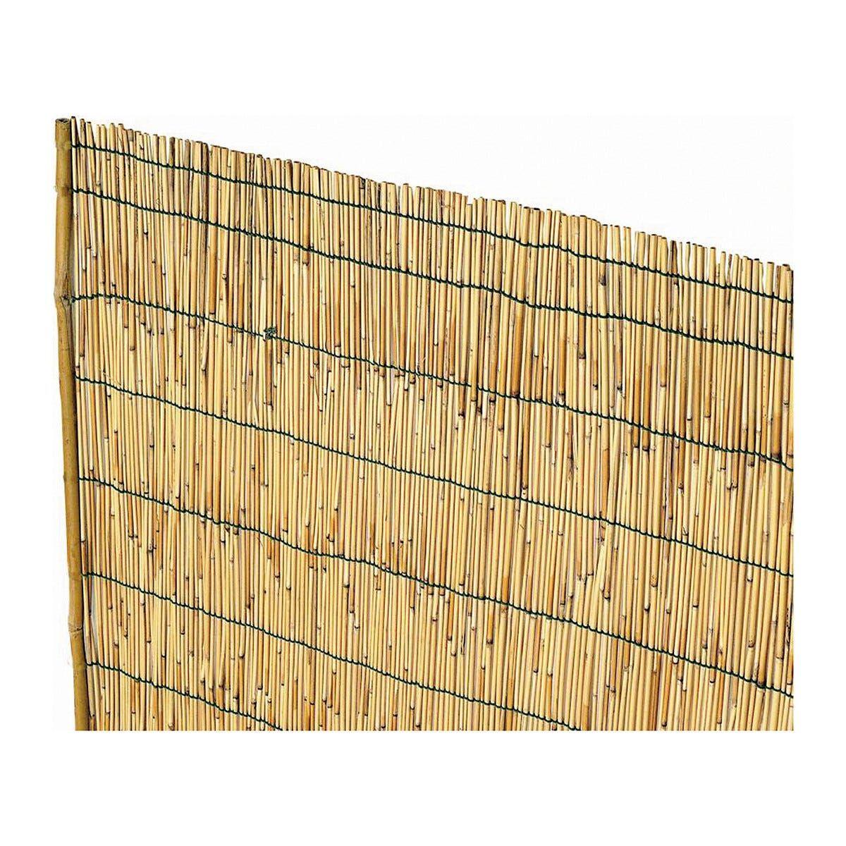 Arella In Cannette Di Bambu' Pelato 1x5m Ø Circa 4-5 Mm Con Filo Nylon Prodotto Naturale