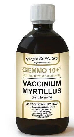 dr.giorgini ser-vis srl gemmo 10+ mirtillo nero liquido analcolico 500 ml
