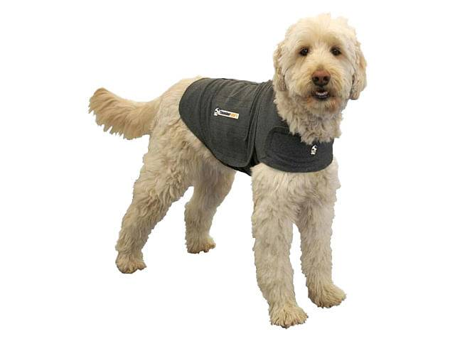 thundershirt pettorina anti ansia per cani l gigio