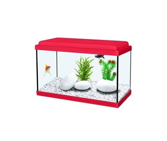 zolux acquario nanolife kidz 30 rosso 30x15x20 cm 8 lt ( vendita solo con pagamento tramite carta di credito o bonifico)