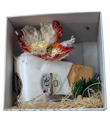 Consorzio Parmigiano Reggiano Scatola regalo Natale Parmigiano 30 Mesi Caseificio Bertinelli