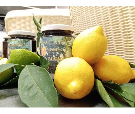 Marmellata Artigianale Limone