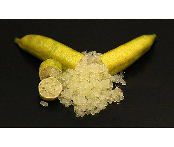 finger lime yellow
