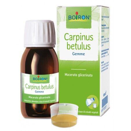 Boiron Carpinus Betulus Mg 60ml Int