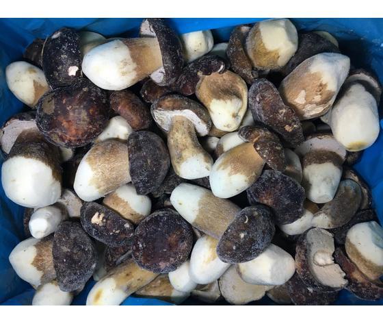 Funghi Porcini Congelati Aereus 10 Kg
