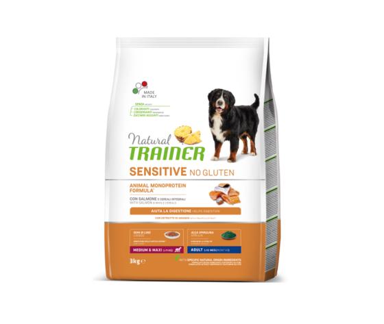 NATURAL TRAINER No Gluten Adult Medium Salmone 12kg