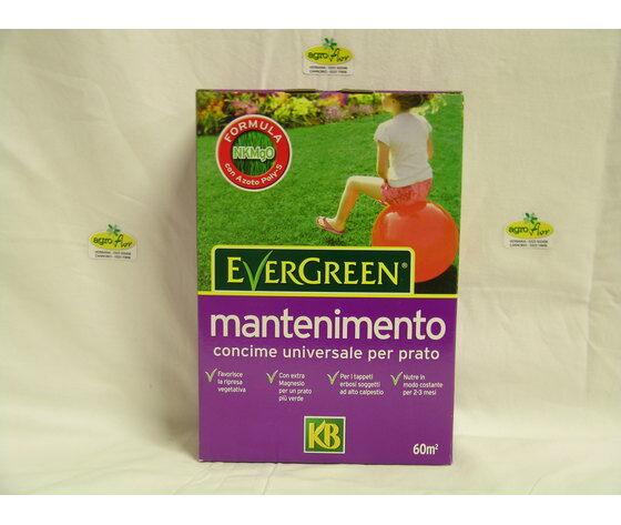 italagro concime evergreen mantenimento 20.5.8+2 kg. 2