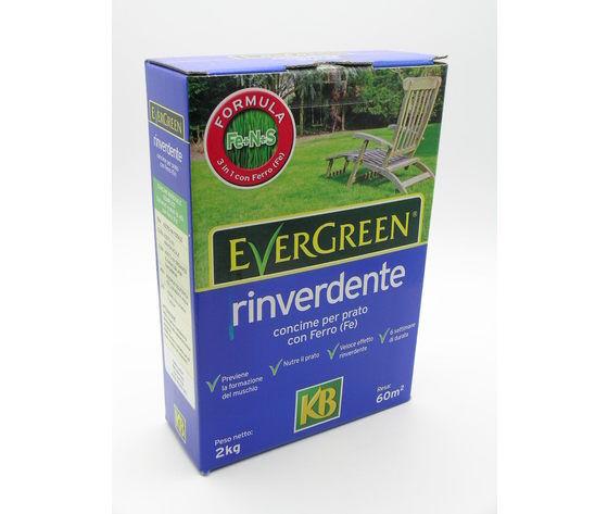 italagro evergreen rinverdente 15+2fe kg. 2