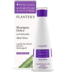 dipros srl planters shampoo dolce aloe vera