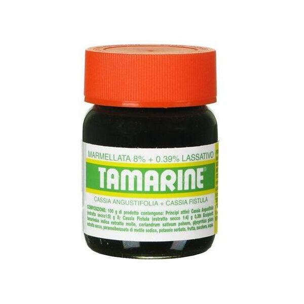 Glaxosmithkline C.Health.Srl Tamarine Marmellata 8% + 0,39% Lassativo 260g
