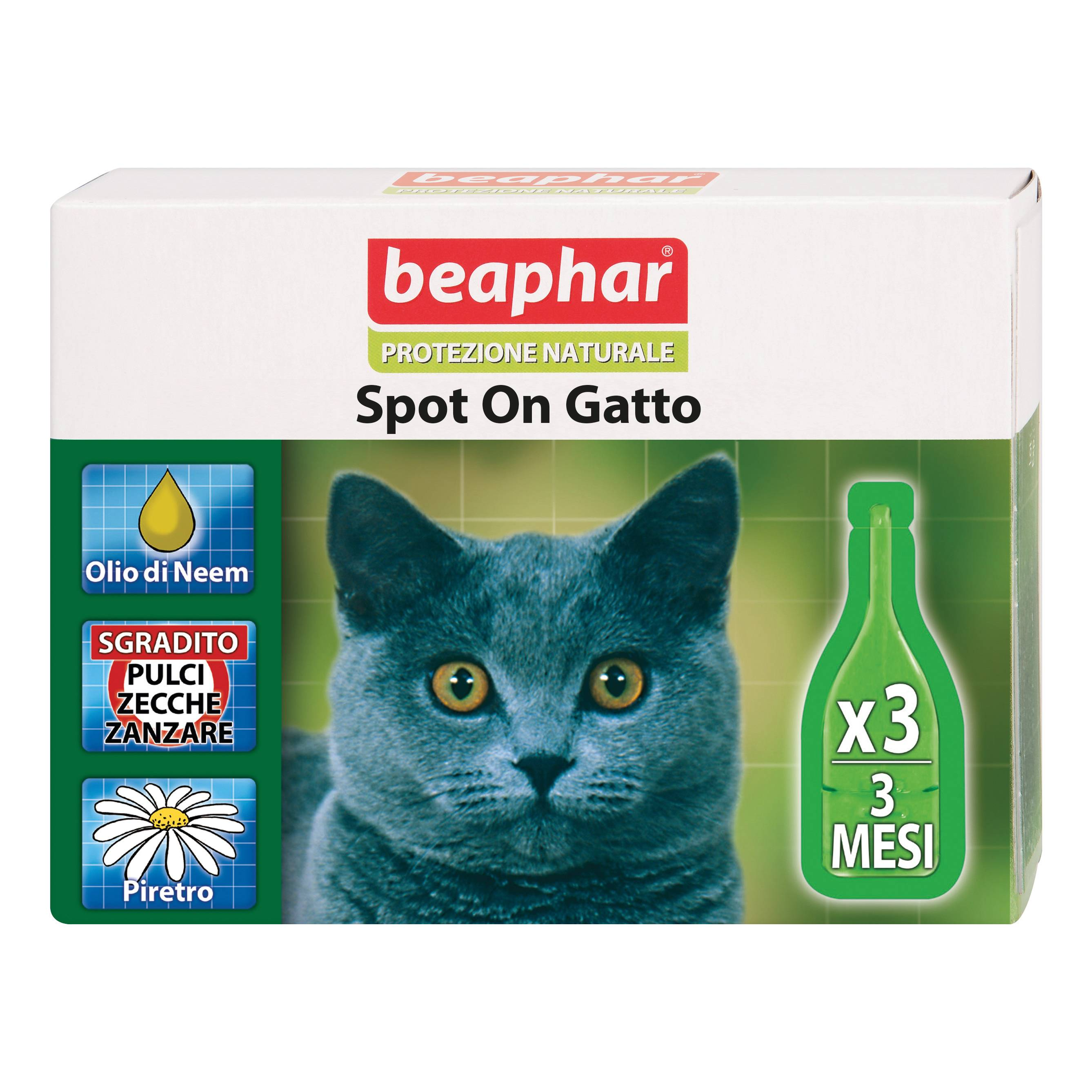 beaphar b.v. protezione nat spot on gatto